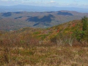 Rogers_Ridge_Balds_View_2