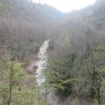 Laurel Fork Gorge