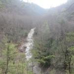 Laurel Fork Gorge