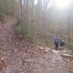 Trail decisions