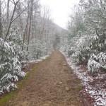 Snow flocked hike
