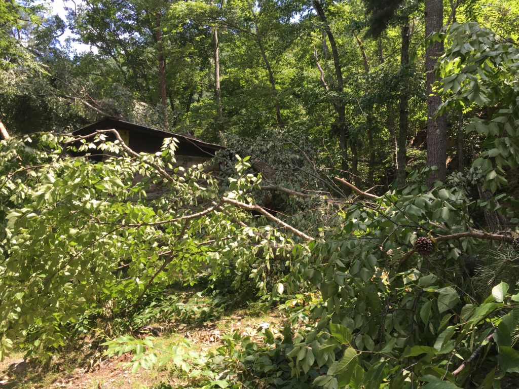 Laurel Fork Shelter - July 2016 Storm Damage